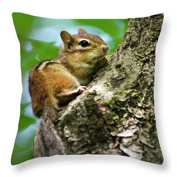 Chipmunk On A Limb Throw Pillow by Christina Rollo