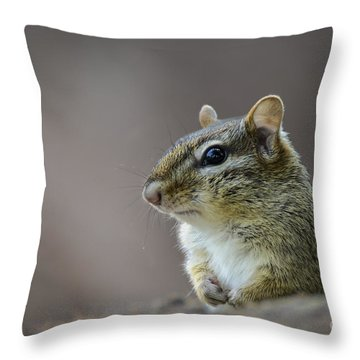 Chipmunk Profile Throw Pillow