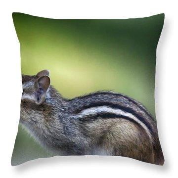 Chippy 1 Throw Pillow