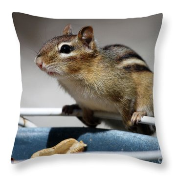 Chippy Throw Pillow by Karol Livote