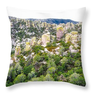 Chiricahua Mountains Throw Pillow