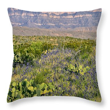 Chisos Mountains Throw Pillow