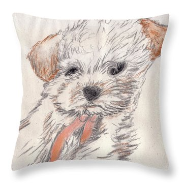 Chloei Throw Pillow