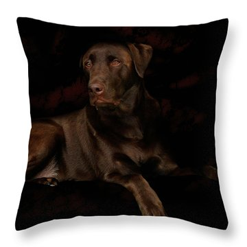 Chocolate Lab Dog Throw Pillow by Christine Till