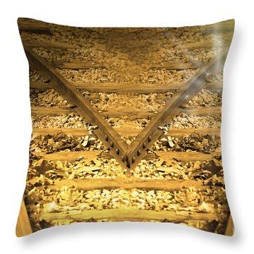 Choice 2 Throw Pillow by Cathy  Beharriell