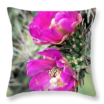 Cholla Blossoms Throw Pillow