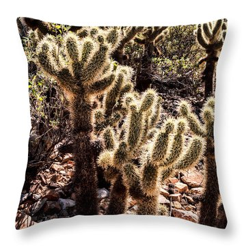 Cholla Cacti Throw Pillow by Lawrence Burry