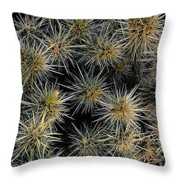 Cholla Cactus Cluster Throw Pillow