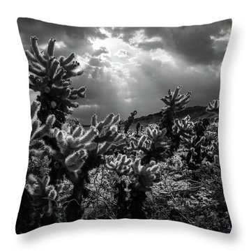 Throw Pillow featuring the photograph Cholla Cactus Garden Bathed In Sunlight In Black And White by Randall Nyhof