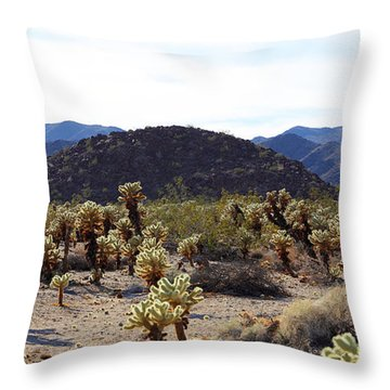 Cholla Cactus Garden Throw Pillow