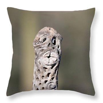 Throw Pillow featuring the photograph Cholla Face - 2 by Christy Pooschke