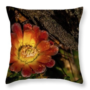 Cholla Throw Pillow