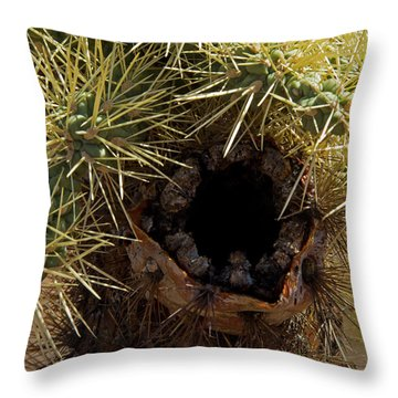 Cholla Nest-signed-#2458 Throw Pillow