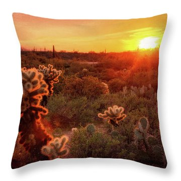 Throw Pillow featuring the photograph Cholla Sunset In The Sonoran  by Saija Lehtonen