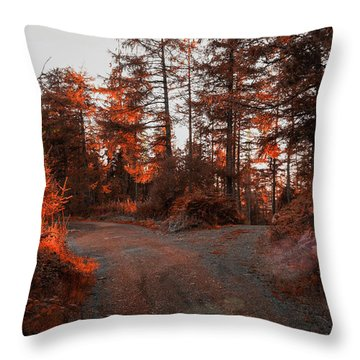 Choose The Road Less Travelled Throw Pillow