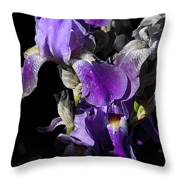 Throw Pillow featuring the photograph Chris' Garden - Purple Iris 1 by Stuart Turnbull