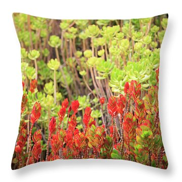 Christmas Cactii Throw Pillow