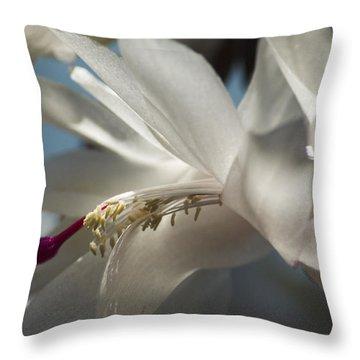 Christmas Cactus Blossom Throw Pillow
