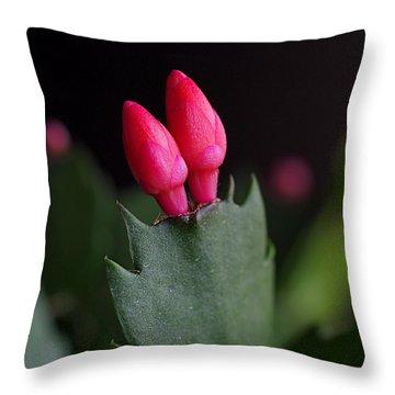 Christmas Cactus Double Joy Throw Pillow by Rona Black