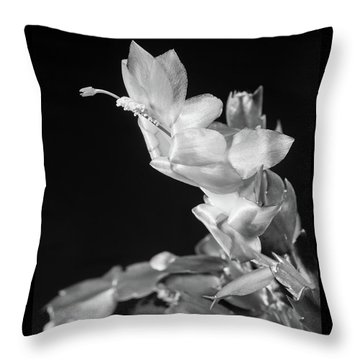 Christmas Cactus On Black Throw Pillow