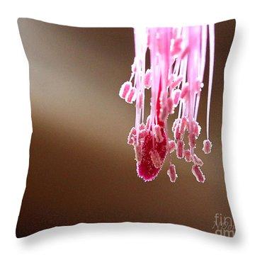 Christmas Cactus Stamen Throw Pillow