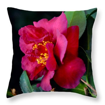 Christmas Camellia Throw Pillow by Marie Hicks