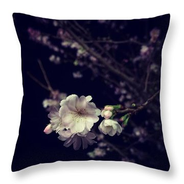 Cherryblossom Throw Pillows