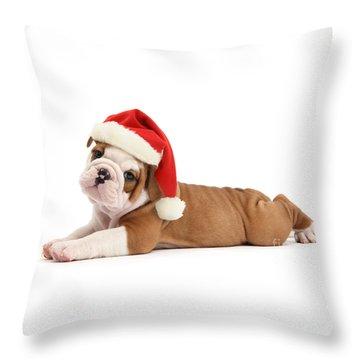 Christmas Cracker Throw Pillow