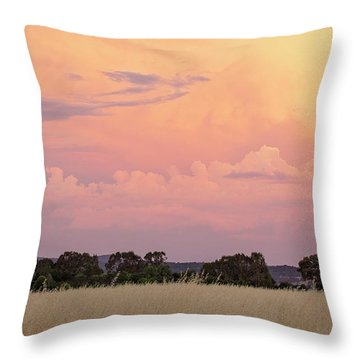 Throw Pillow featuring the photograph Christmas Eve In Australia by Linda Lees
