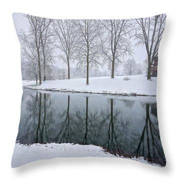 Winter Landsape Throw Pillow