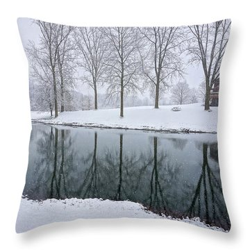 Winter Landsape Throw Pillow