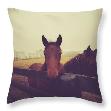 Throw Pillow featuring the photograph Christmas Horses by Shane Holsclaw