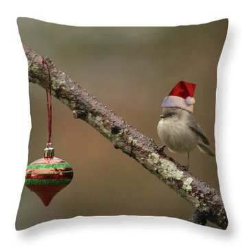 Throw Pillow featuring the photograph Christmas In The Backyard by Angie Vogel