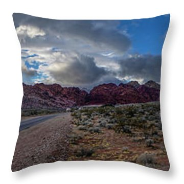 Throw Pillow featuring the photograph Christmas In The Desert by Ryan Smith