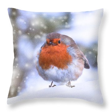 Throw Pillow featuring the photograph Christmas Robin by Scott Carruthers