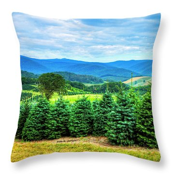 Christmas Spirit Throw Pillow by Dale R Carlson