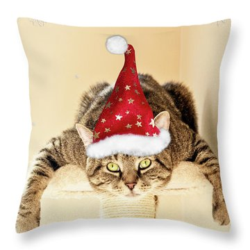 Christmas Splat Cat Throw Pillow