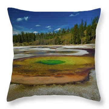 Throw Pillow featuring the photograph Chromatic Pool by Roger Mullenhour
