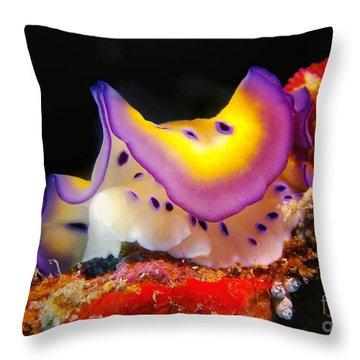 Chromodoris Kunei Nudibranch  Throw Pillow by Sergey Lukashin