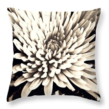 Throw Pillow featuring the photograph Chrysanthemum In Sepia 2  by Sarah Loft