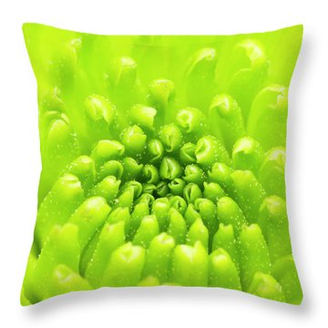 Chrysanthemum Macro Throw Pillow by Wim Lanclus