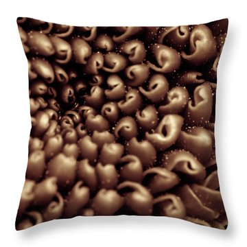 Chrysanthemum Sepia Throw Pillow
