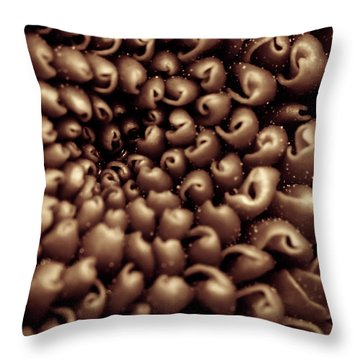 Chrysanthemum Sepia Throw Pillow
