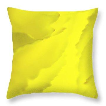 Chrysanthemum Throw Pillow by Svetlana Sewell