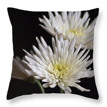 Chrysanthemums Throw Pillow by Svetlana Sewell