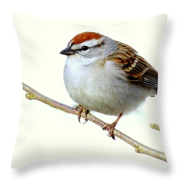 Chubby Sparrow Throw Pillow