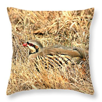 Throw Pillow featuring the photograph Chuckar Bird Hiding In Grass by Sheila Brown