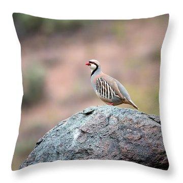 Chukar Partridge 2 Throw Pillow by Leland D Howard