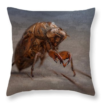 Cicada Shell Throw Pillow