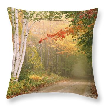 Cilley Hill Road In Underhill Vermont. Throw Pillow